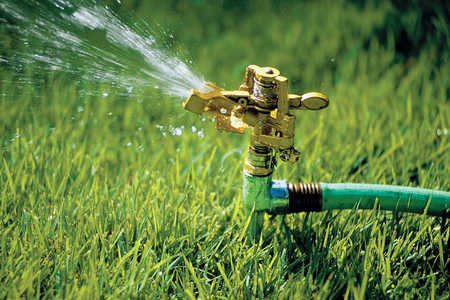 Pick the Best Sprinkler