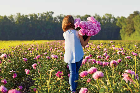 Peonies in a Field with Girl Walking