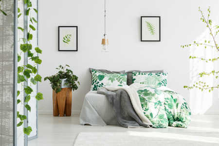Bring These Plants Into the Bedroom For Better Sleep