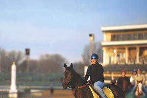 horse and rider at churchill downs