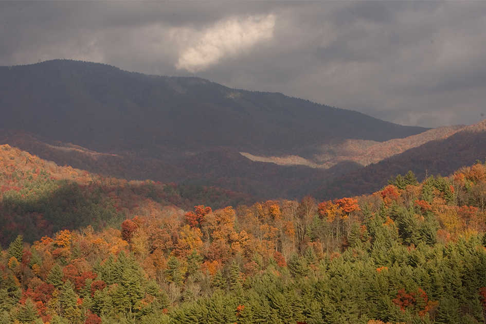 Smoky Mountain National Park, Gatlinburg, TN