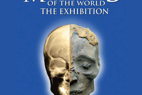 Tampa Bay Mummies Exhibit